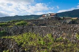 Travolon Azoren Pico wijn