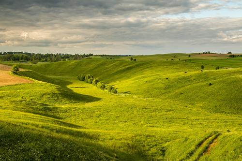 Travolon Polen vlakte