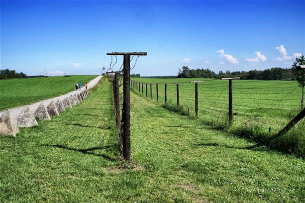 Travolon Freedom Trail