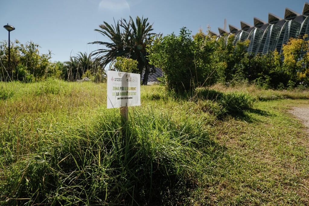 Travolon Jardín del Turia