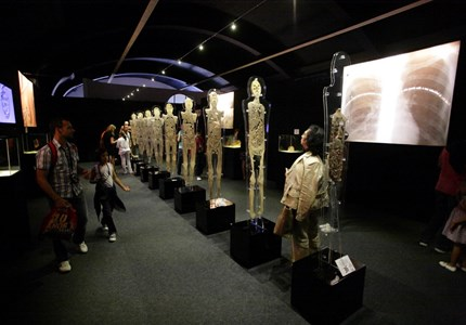 Exposition Human Bodies